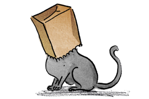 Cat with paper bag on head