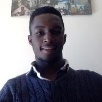 Olaoluwa O. GCSE Further Mathematics  tutor, A Level Further Mathemat...